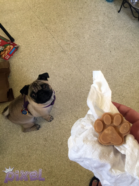 Frozen Peanut Butter, Banana, & Coconut Oil Dog Treats