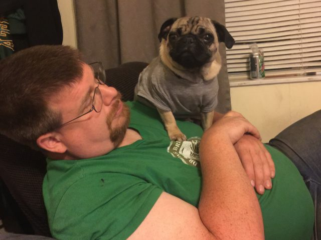 After Dinner Pugs
