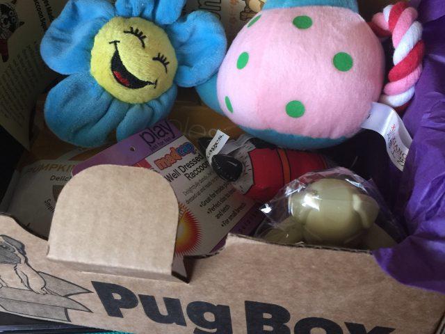 Pug Box Part Deux