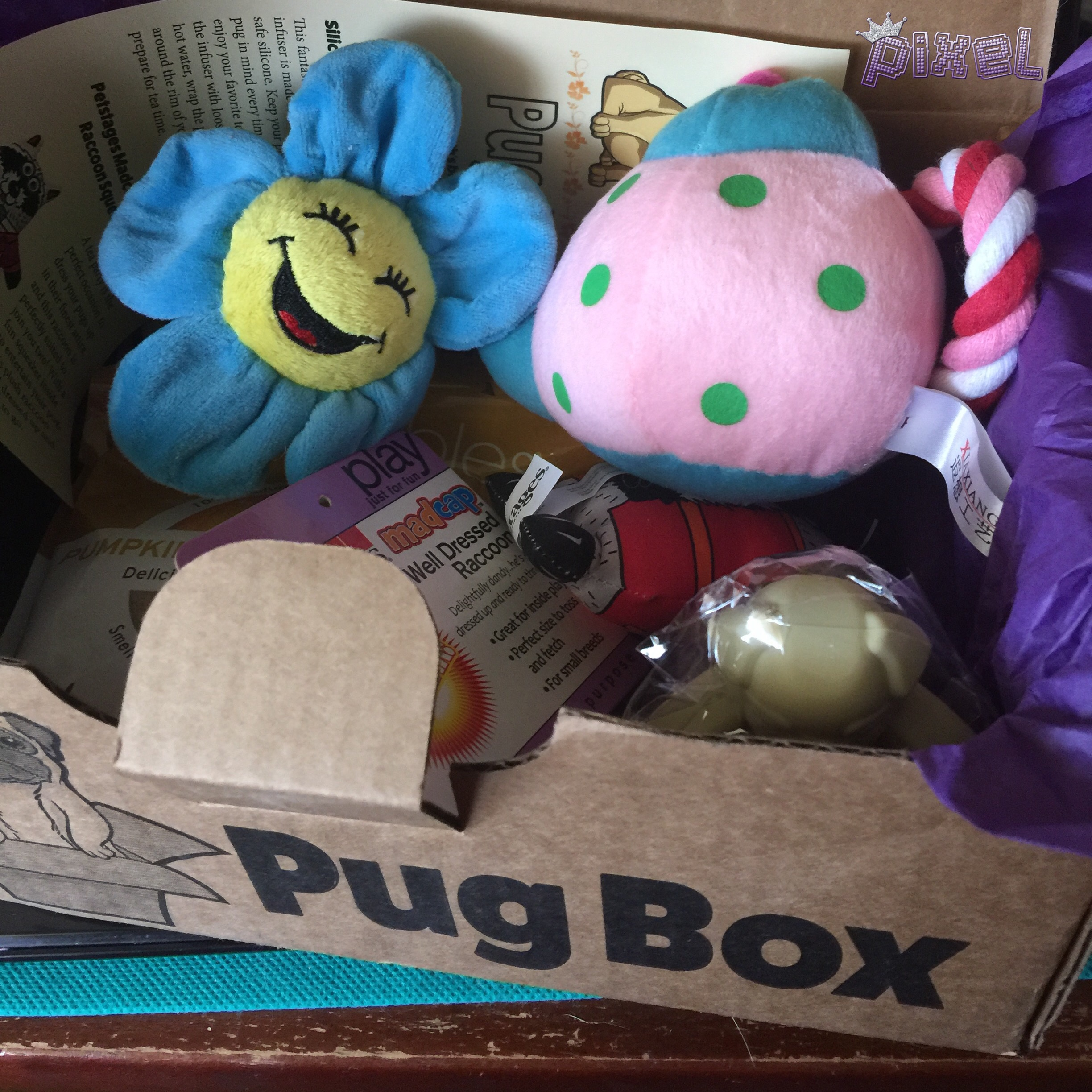 Pug Box #2 Goodies