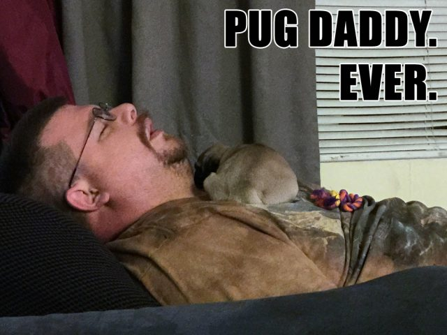 Best. Pug Daddy.  Ever.