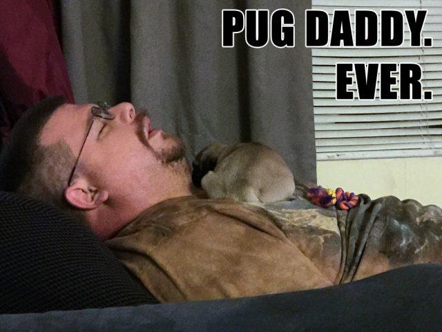 Best. Pug Daddy.  Ever.