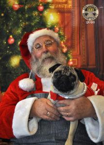 Pixel & Santa 2016